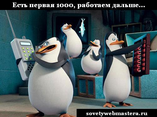 Пингвин – новый алгоритм от Google