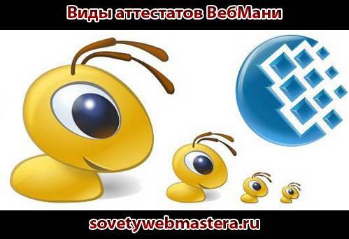 vidyi-attestatov-vebmani